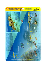 Reef Smart/Mango Media Reef Smart Wreck Map Ancient Mariner