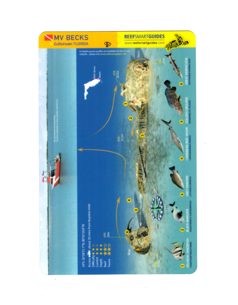 Reef Smart/Mango Media Reef Smart Wreck Map MV Becks