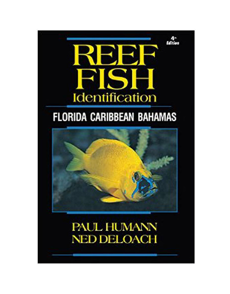 New World Publications Reef Fish ID Caribbean Book