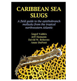 Force-E Caribbean Sea Slugs Book