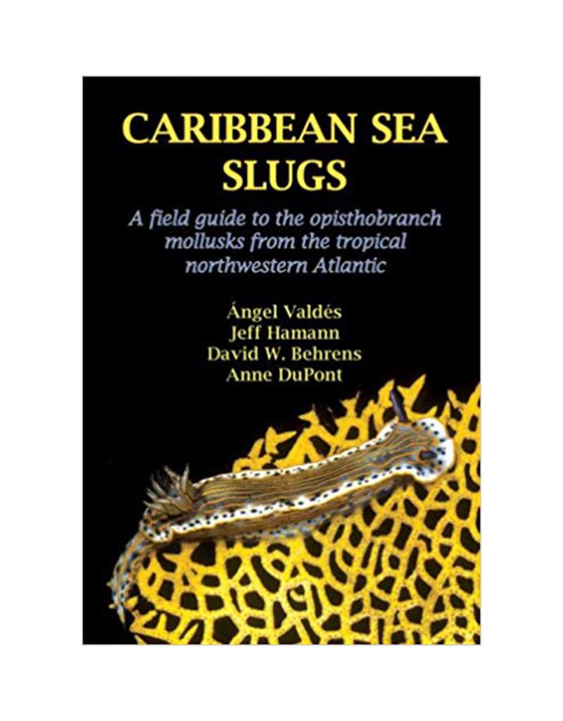 Force-E Caribbean Sea Slugs Book