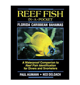 New World Publications Fish-In-A-Pocket Florida Caribbean Book