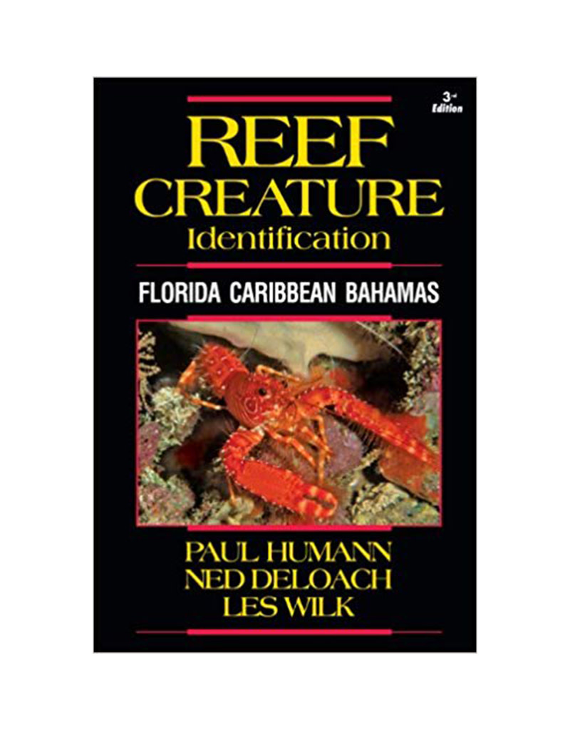 New World Publications Reef Creature ID Caribbean Book
