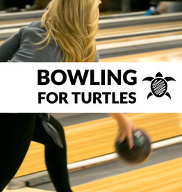 Force-E Scuba Centers Bowling for Turtles