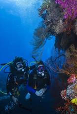 Force-E Scuba Centers Dive Fiji 2021