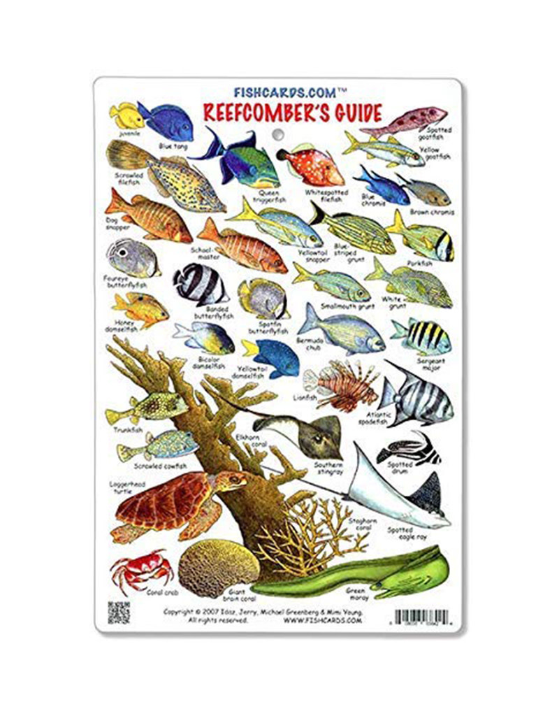 Marine Sports Mfg. Marine Sports ID Reef Comber Card