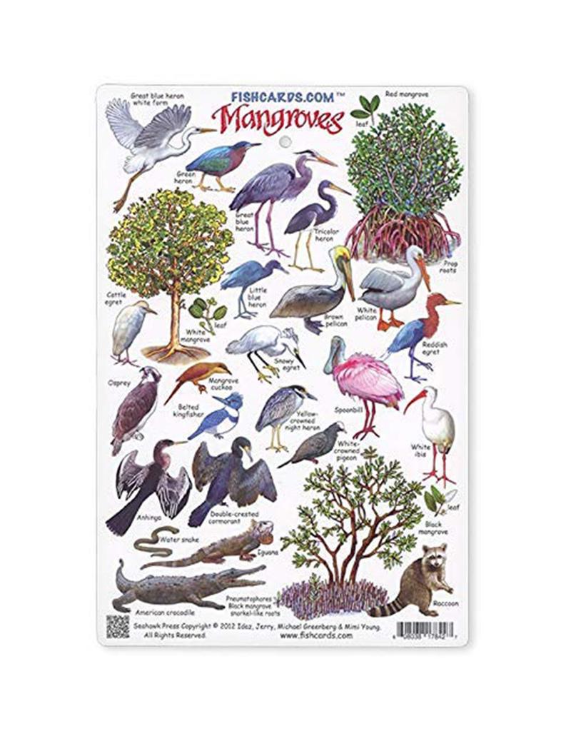 Marine Sports Mfg. Marine Sports ID Card - Mangroves