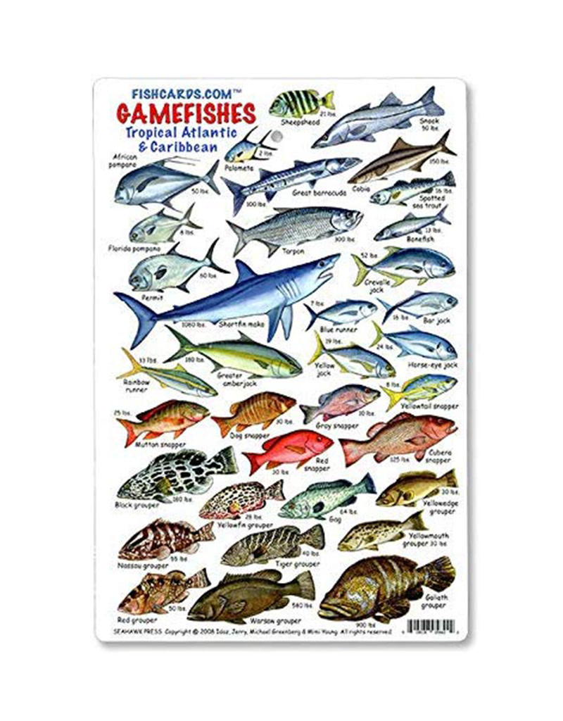 Marine Sports Mfg. Marine Sports ID Game Fish Card