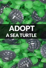 Force-E Scuba Centers Adopt a Sea Turtle with Force-E