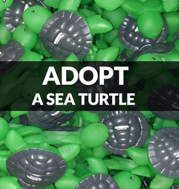 Force-E Scuba Centers Adopt a Sea Turtle with Force-E