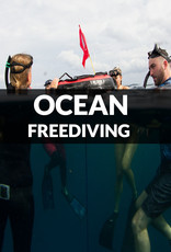 Force-E Scuba Centers Ocean Freediving Workshop