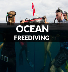 Force-E Scuba Centers Ocean Freediving Workshop