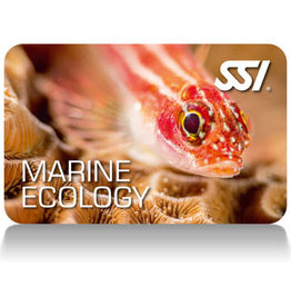 Force-E Scuba Centers SSI Marine Ecology Course