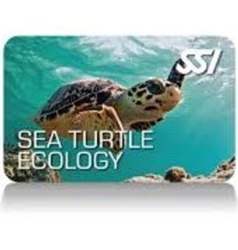 Force-E Scuba Centers SSI Sea Turtle Ecology Course
