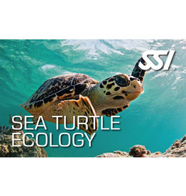 SSI SSI Sea Turtle Ecology Digital Kit