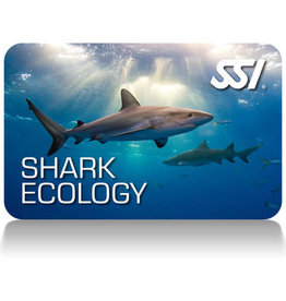 Force-E Scuba Centers SSI Shark Ecology Course