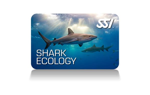 Force-E Scuba Centers SSI Shark Ecology Course