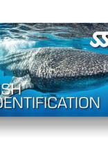Force-E Scuba Centers SSI Fish Identification Course