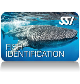 Force-E Scuba Centers SSI Fish Identification Course