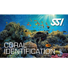SSI SSI Coral Ecology Digital Kit