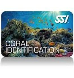 Force-E Scuba Centers SSI Coral Ecology Course