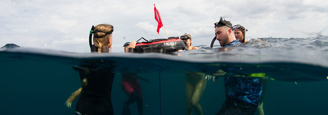 Why SCUBA Divers Should Take a Freediving Course