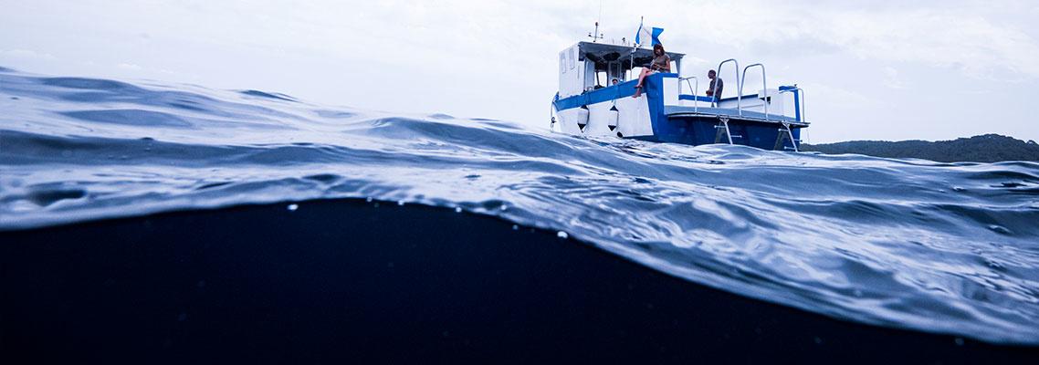 Pro Tips on Avoiding Seasickness
