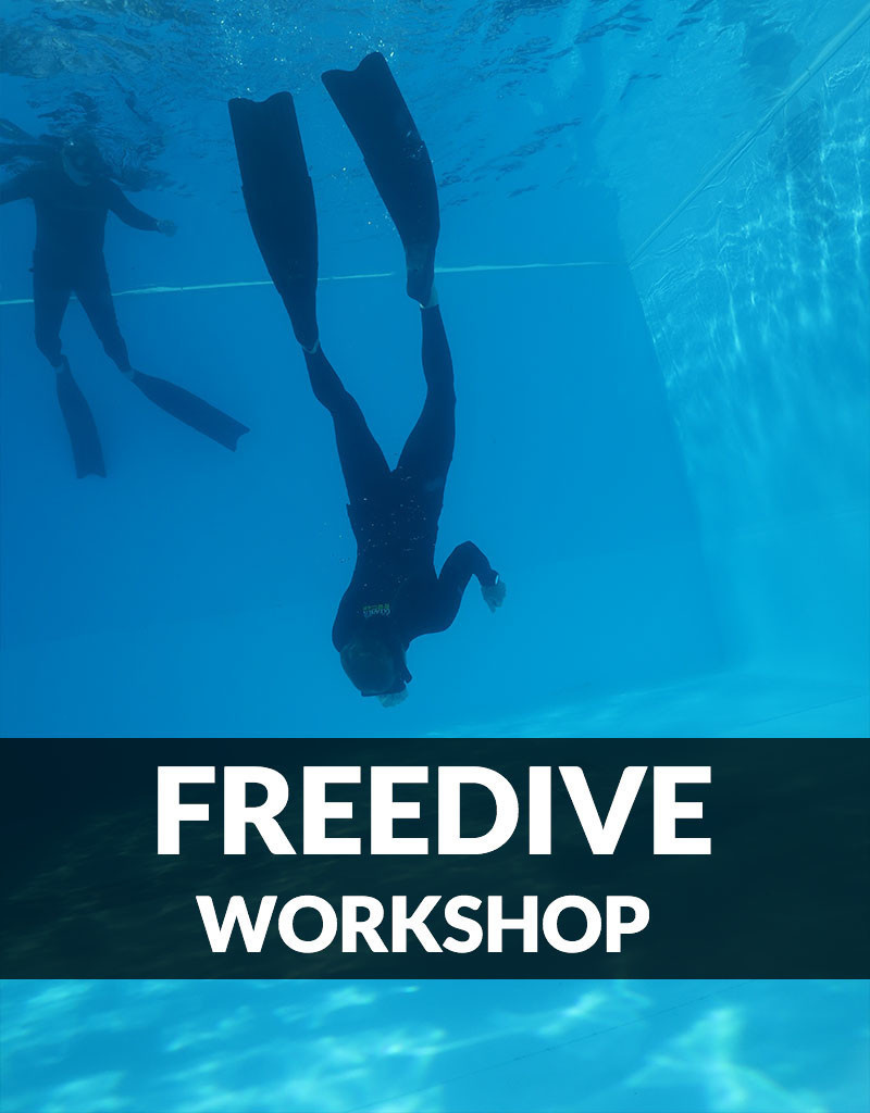 Force-E Scuba Centers Pool Freediving Workshop