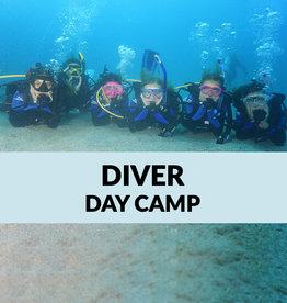 Force-E Scuba Centers Certified Diver Day Camp-Riviera