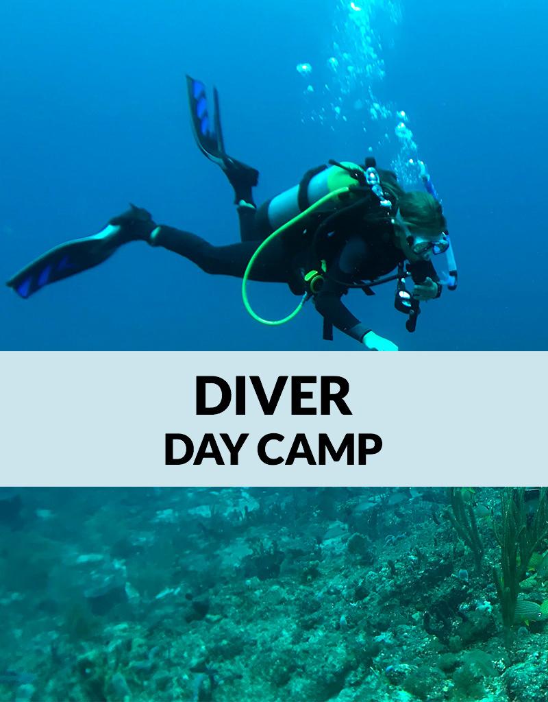 Force-E Scuba Centers Certified Diver Day Camp-Pompano