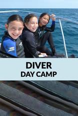 Force-E Scuba Centers Certified Diver Day Camp-Boca Raton