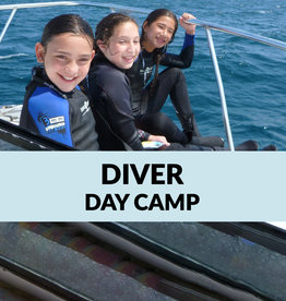 Force-E Scuba Centers Certified Diver Day Camp-Boca Raton