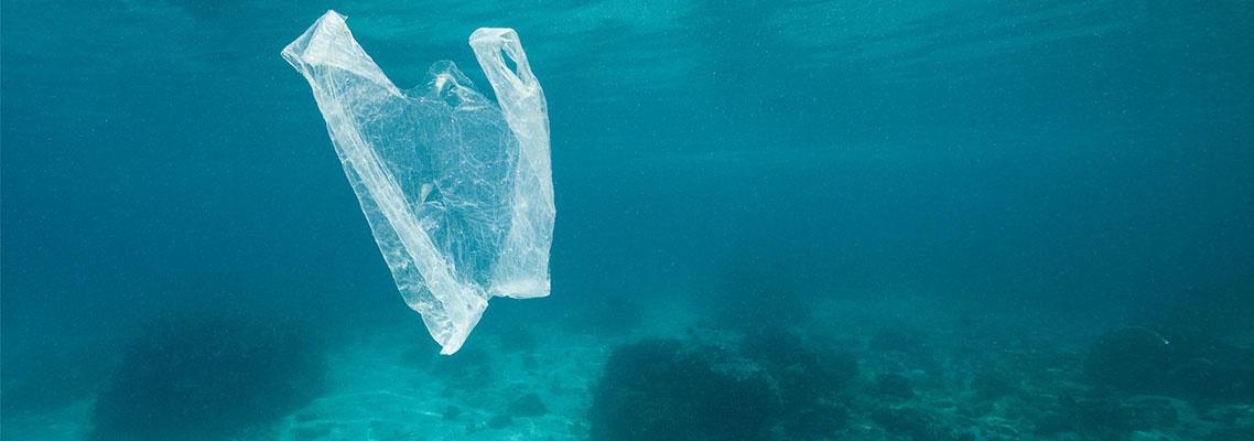 Little Plastics...No one wants a Trashy Ocean