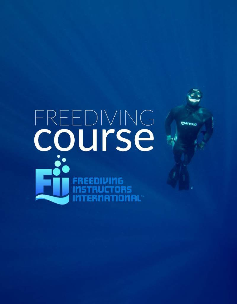 Force-E F.I.I. Level 1 Freediver Course
