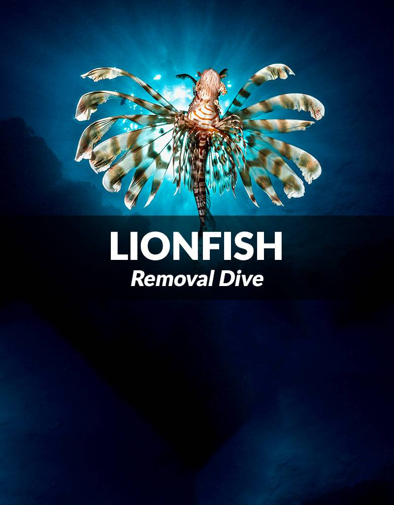 Force-E Scuba Centers Lionfish Removal Dive - May 12, 2018