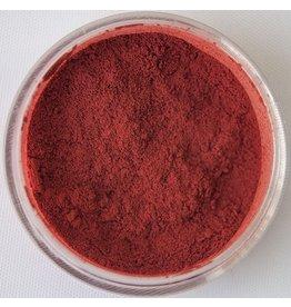 Winter [Red] Dynamo