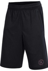 Under Armour Under Armour Youth intimidator short
