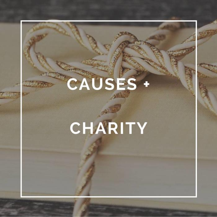 Causes + Charity