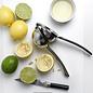 Premium Citrus Juicer, Stainless Steel