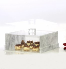 Waterdale Collection Square Lucite Marble Cake Dome