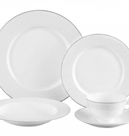 Stardust platinum 20 pc Dinnerware Set