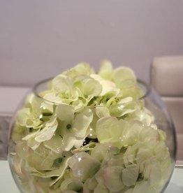 "8"" bubble ball with Green Hydrangeas"
