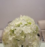 "8"" bubble ball with White Hydrangeas"