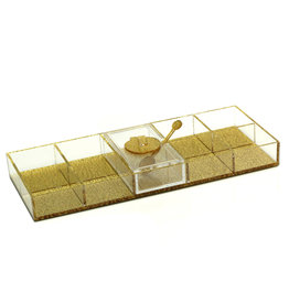 Gold Shimmer Lucite Simanim Divided Tray