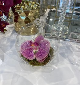Hanging Glass Bowl with Pink/Green Orchid