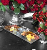 Waterdale Collection Silver Shimmer Lucite Simanim Divided Tray