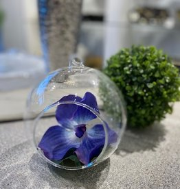 Hanging Glass Bowl with Vanda Purple Orchid