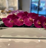 """12"""" Mirror Vase with One Arched Purple Orchid"""