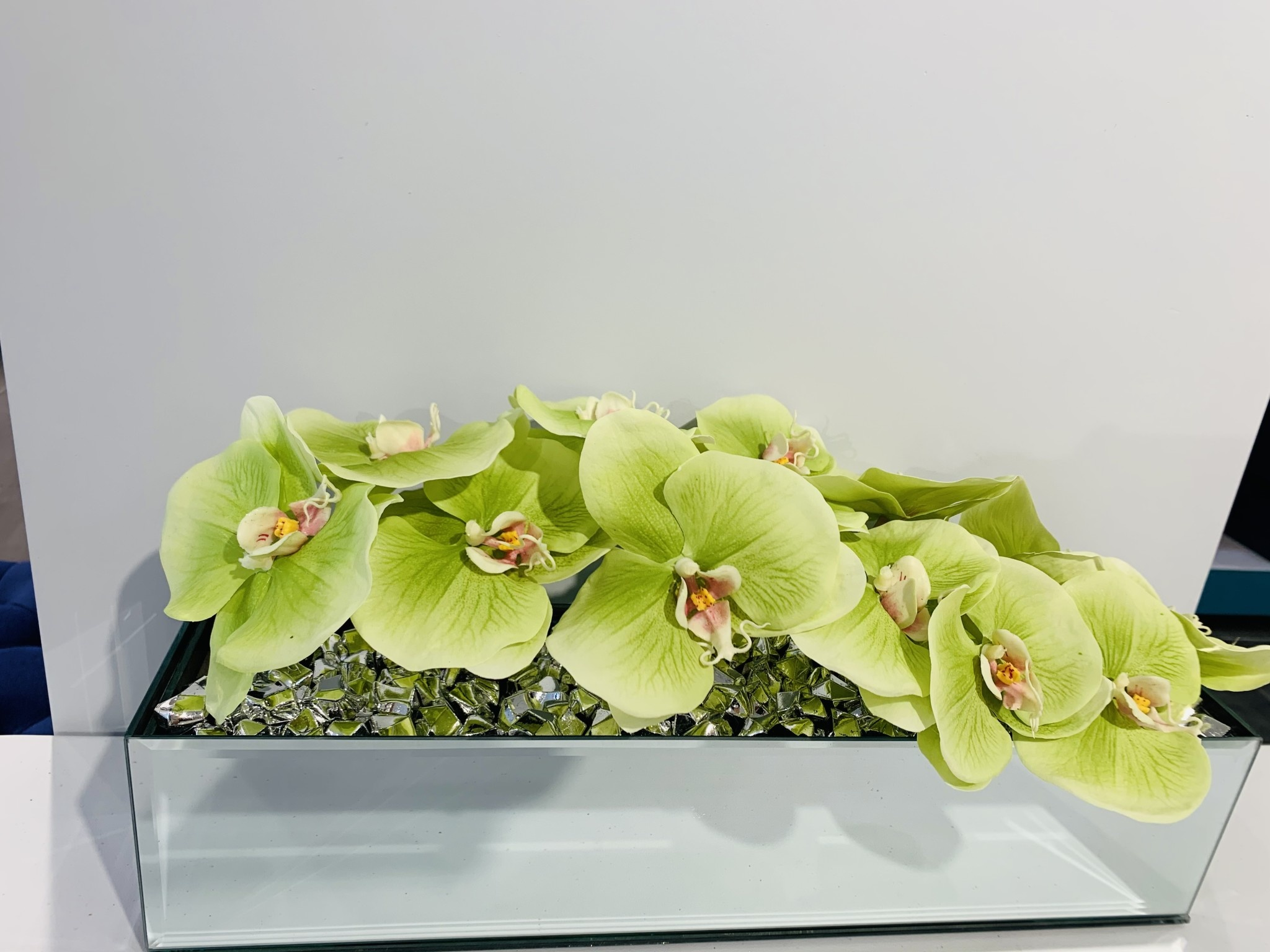 """18"""" Mirror Vase with Arched Green Orchid"""