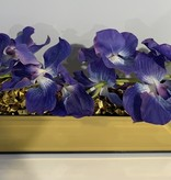 """18"""" Gold Mirror Vase with Arched Purple Vanda Orchids"""